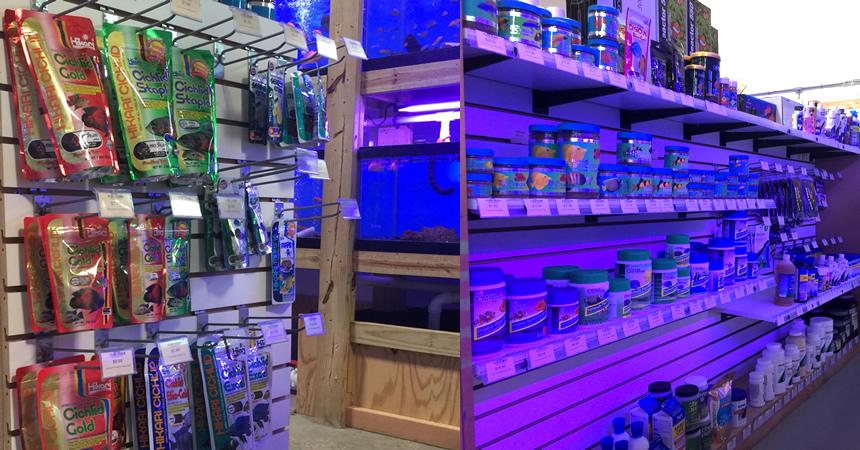 Cte aquatics live frozen dry foods for Fish store baltimore